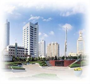 上海某某国际贸易有限公司