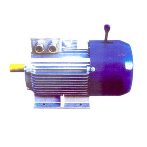 YEJ2系列電磁制動電動機