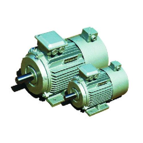 YVF2系列變頻調速三相異步電動機