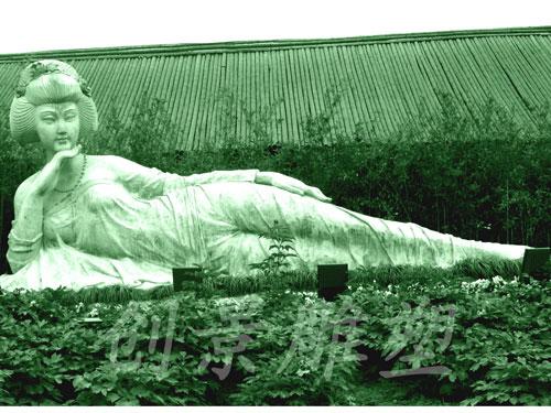 太仓牡丹园--牡丹仙子-