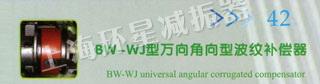 BW-WJ型万向角向型波纹补偿器