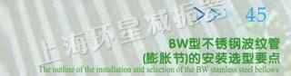 BW型不锈钢波纹管(膨胀节)