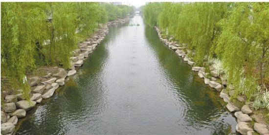 """黄河流域""""治理+修复""""全力全开"""