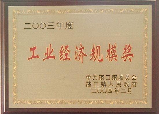 2003年度工业经济规模奖