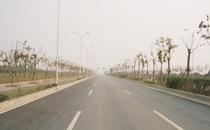 临港市政E7路(二标)