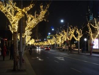 LED Christmas Light(Shanghai Nanjing Western Road)