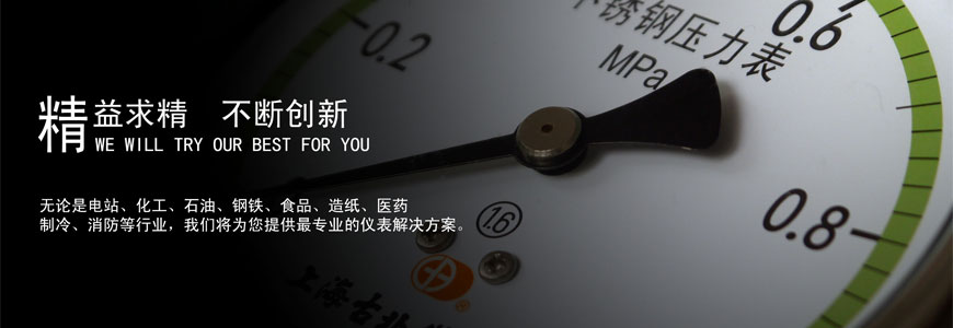 【官网】上海古北仪表厂(古博仪表)