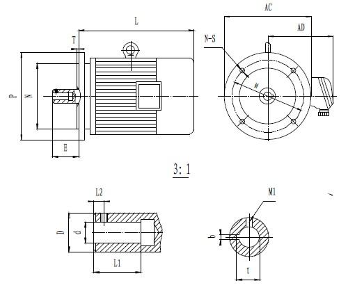 直联式外形及安装尺寸图