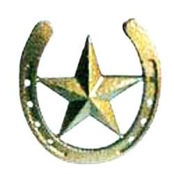 "6"" 3D Horsehoe star(DB)"