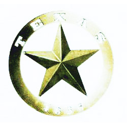 "18"" Texas 1836 Star"