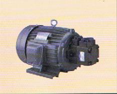液压站用电机