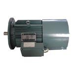 塔机变幅机构用变极多速电磁制动三相异步电动机