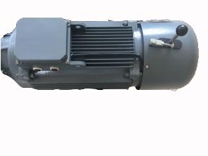 变频施工升降机起重用盘式制动三相异步电动机