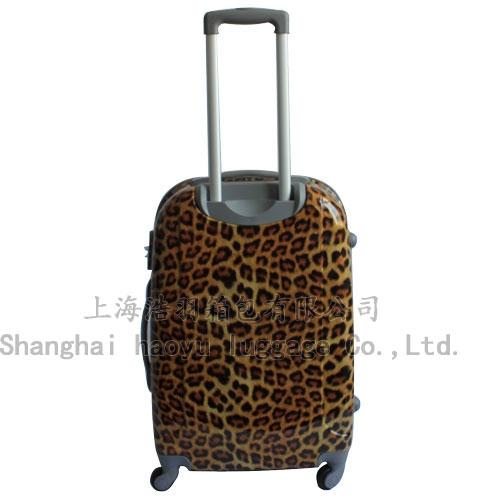 HY-312(leopard)
