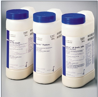 BD弧桿菌檢測培養基