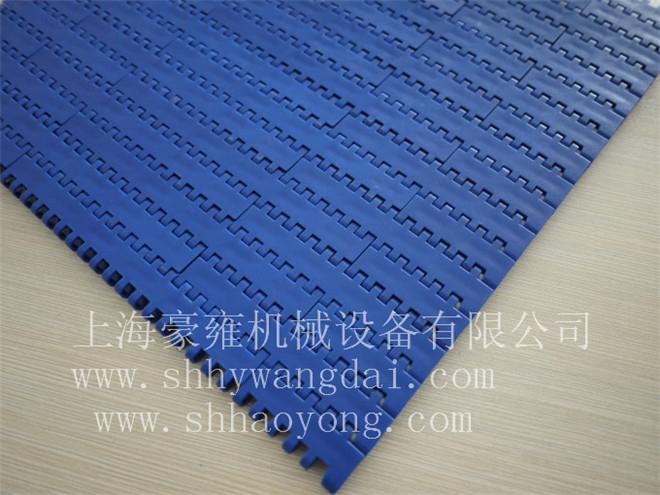 1100平板型塑料网带