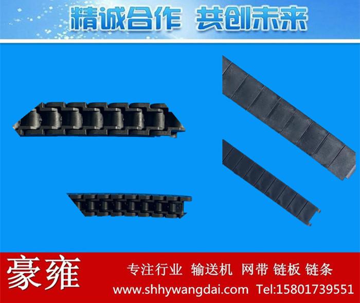 40P/60P防静电链条