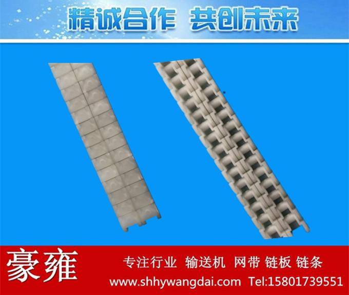 40P/50P/60P双排式塑料链条