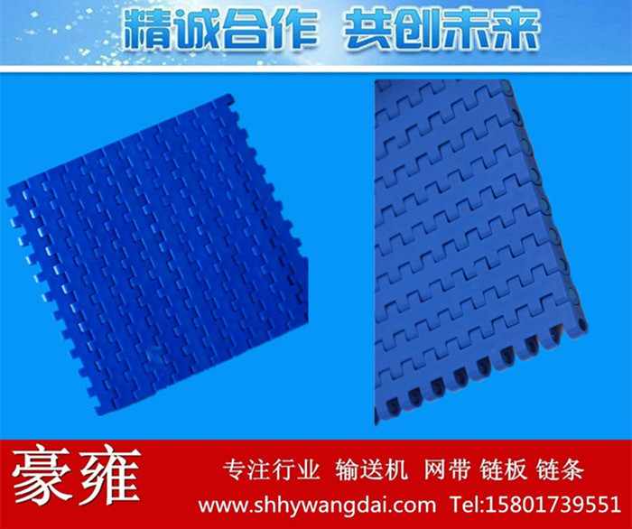 1270平板型塑料网带