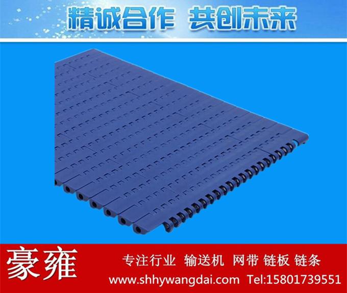 1100-1平板式网带链