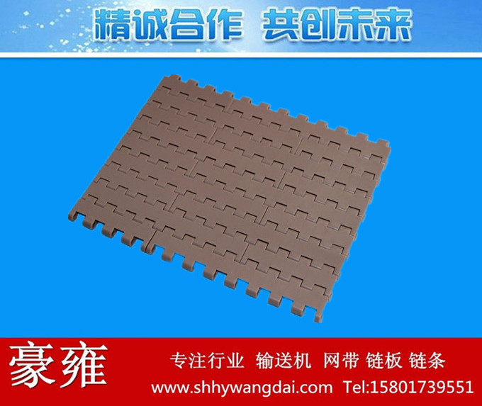 5935平板型塑料模块网带