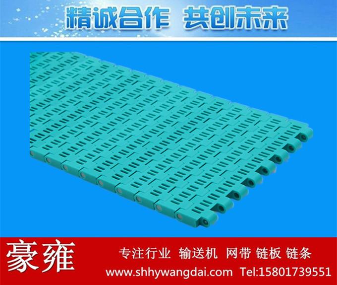5935平格型塑料网带
