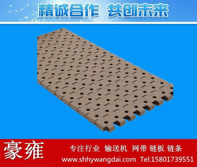 5935圆孔型塑料网带