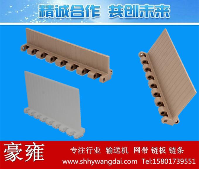 5935挡板型塑料网带