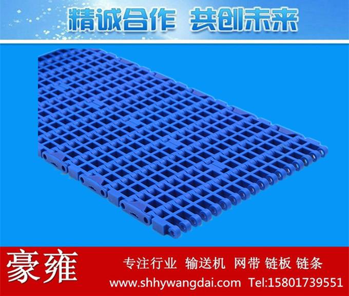 1000平格式塑料网带