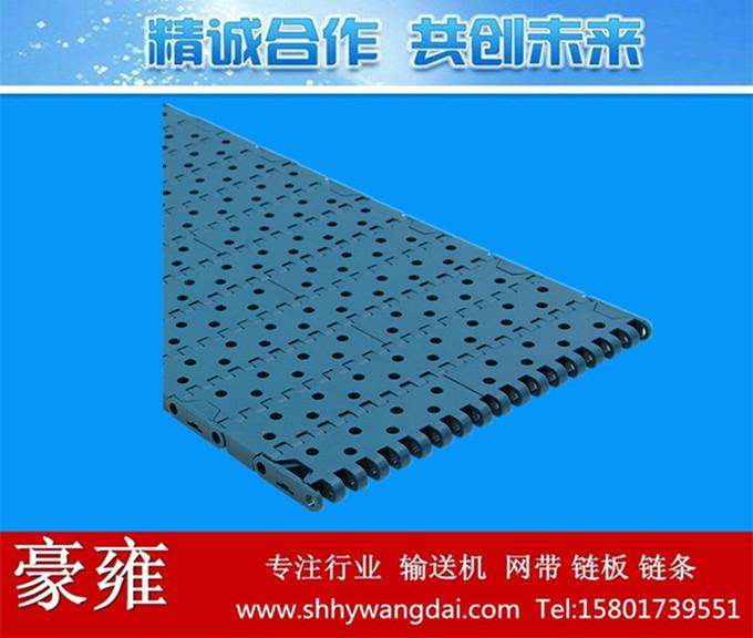 1000圆孔型塑料网链