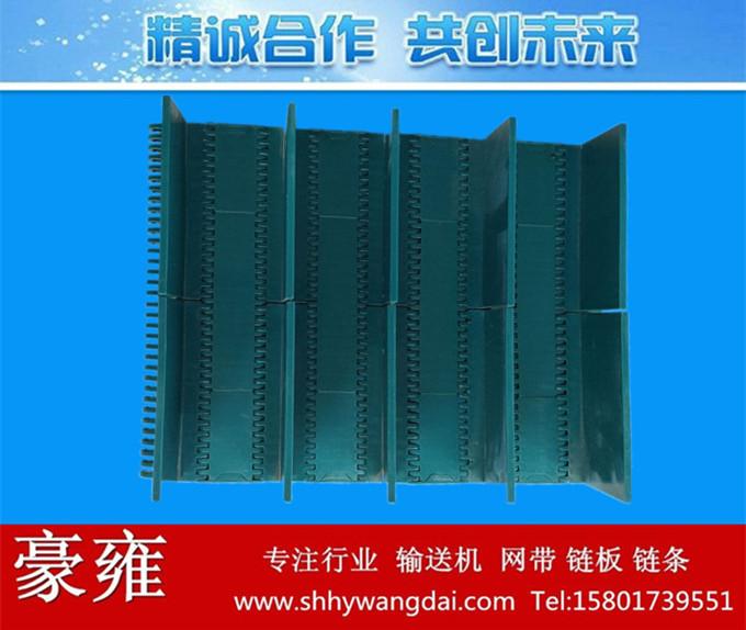 1000挡板式塑料网链