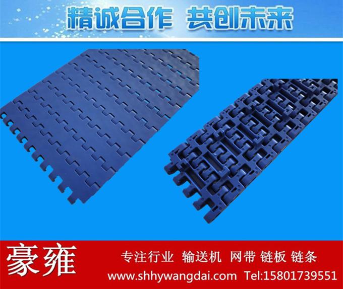1005平板带限位塑料网带