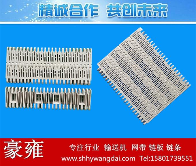 5996平格型塑料模块网带链