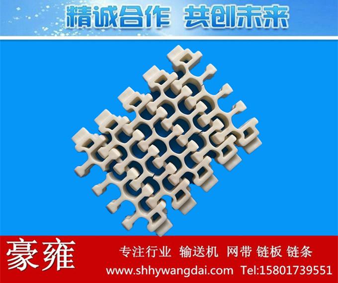 2201转弯式塑料网带链