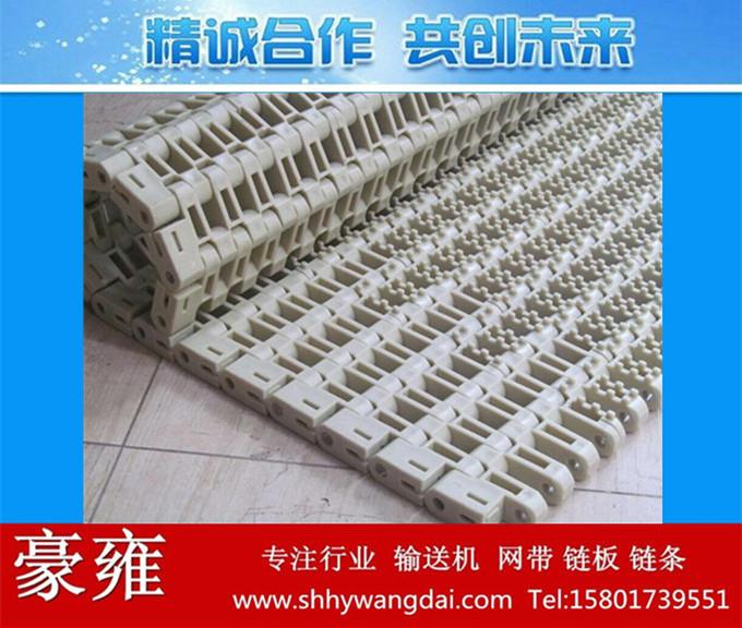 1700防滑凸点网带链