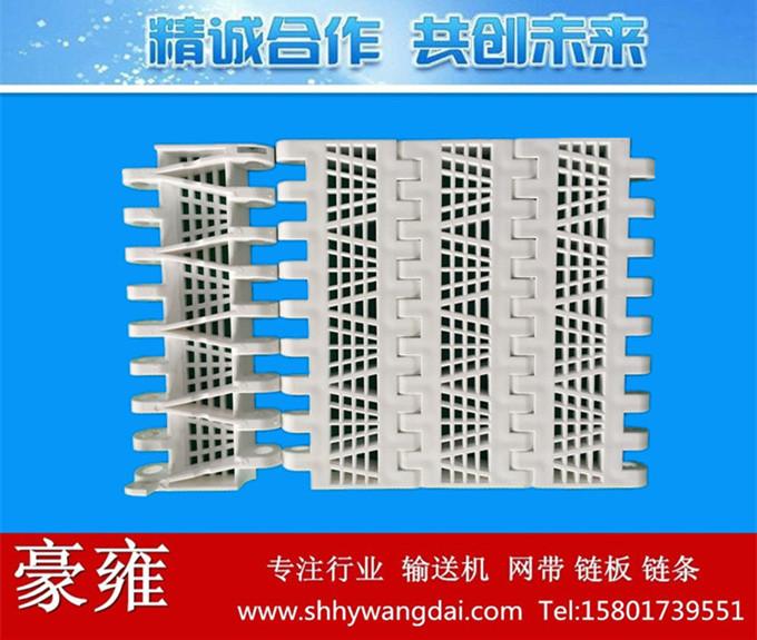 OPB平格型加筋塑料网带