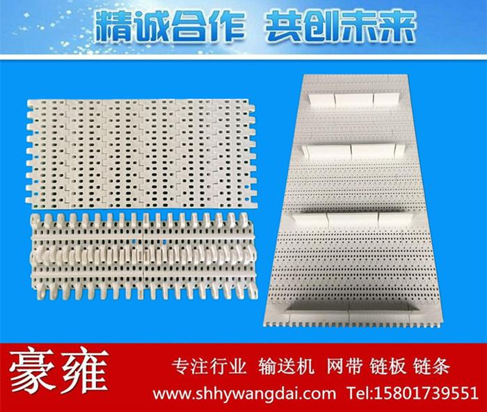800圆孔型塑料网带