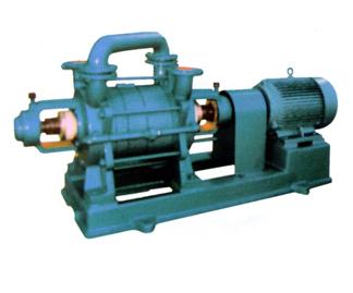 2SK型水環式真空泵