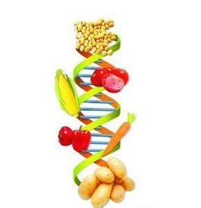 食药监总局:转基因冒充非转基因将构成食品宣传欺诈