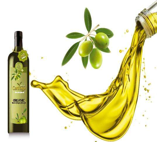 科普:橄榄油成分可能有助预防脑癌