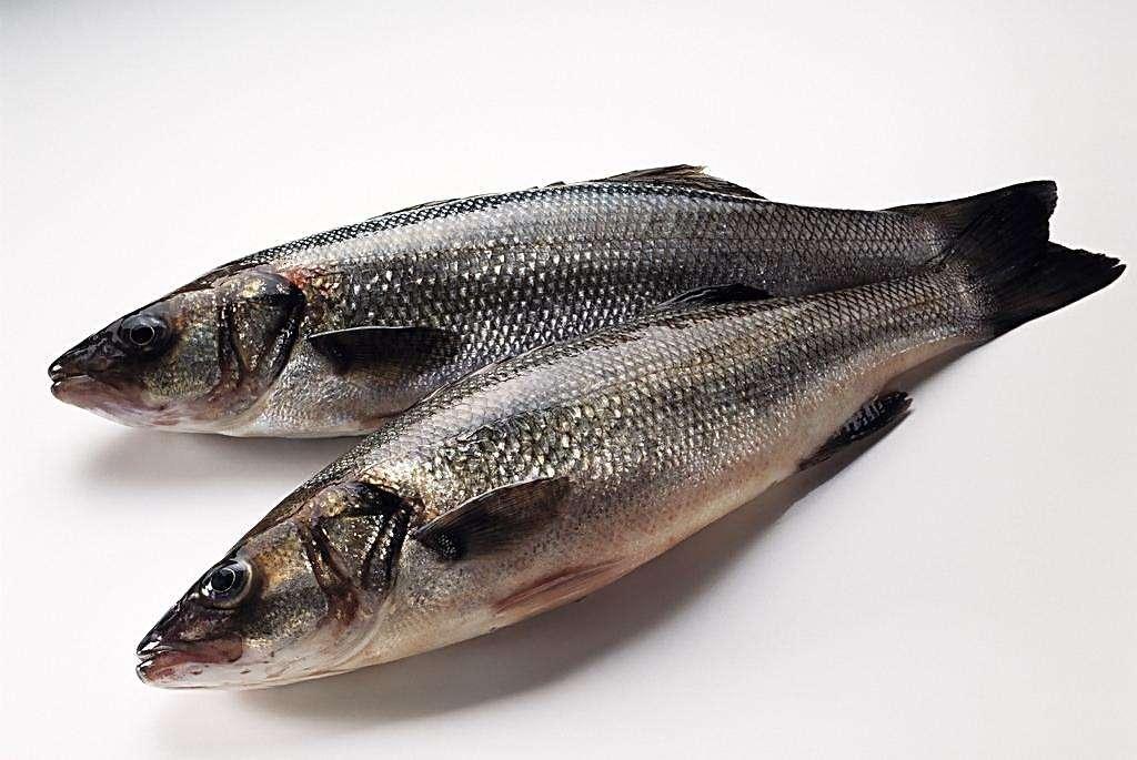 研究发现鸡蛋和鱼能有效补充维生素D