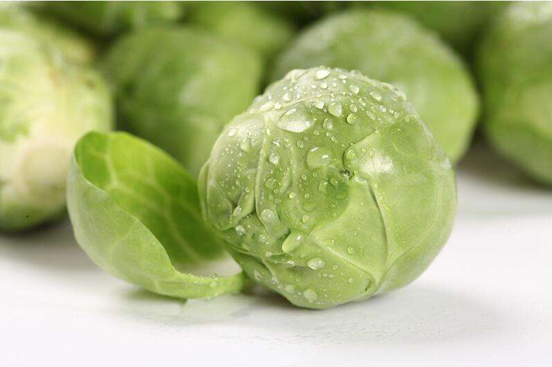 卷心菜:菜球沉实为新鲜