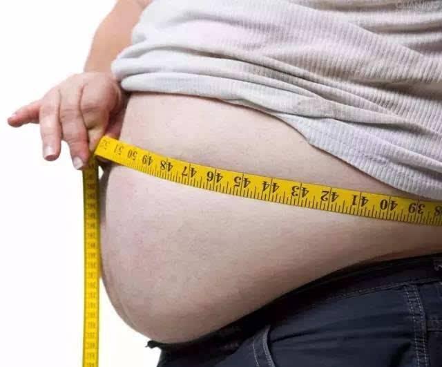 减肥应少吃米饭还是少吃肉