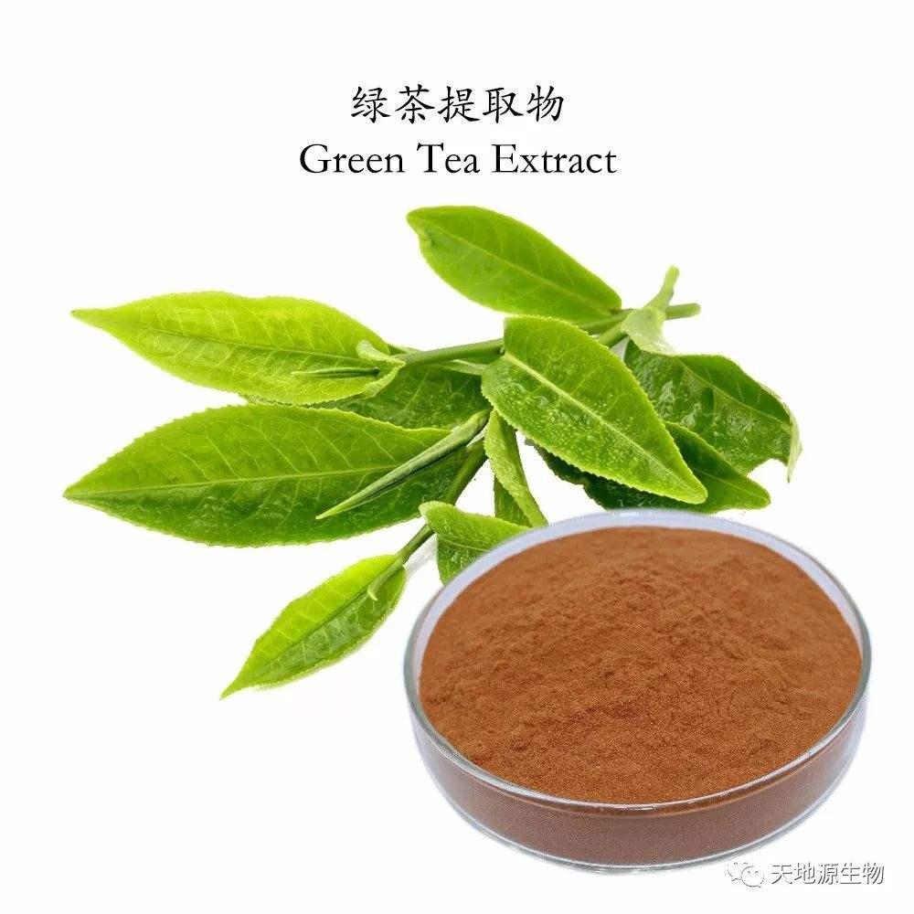 研究发现绿茶提取物可治疗自身免疫病
