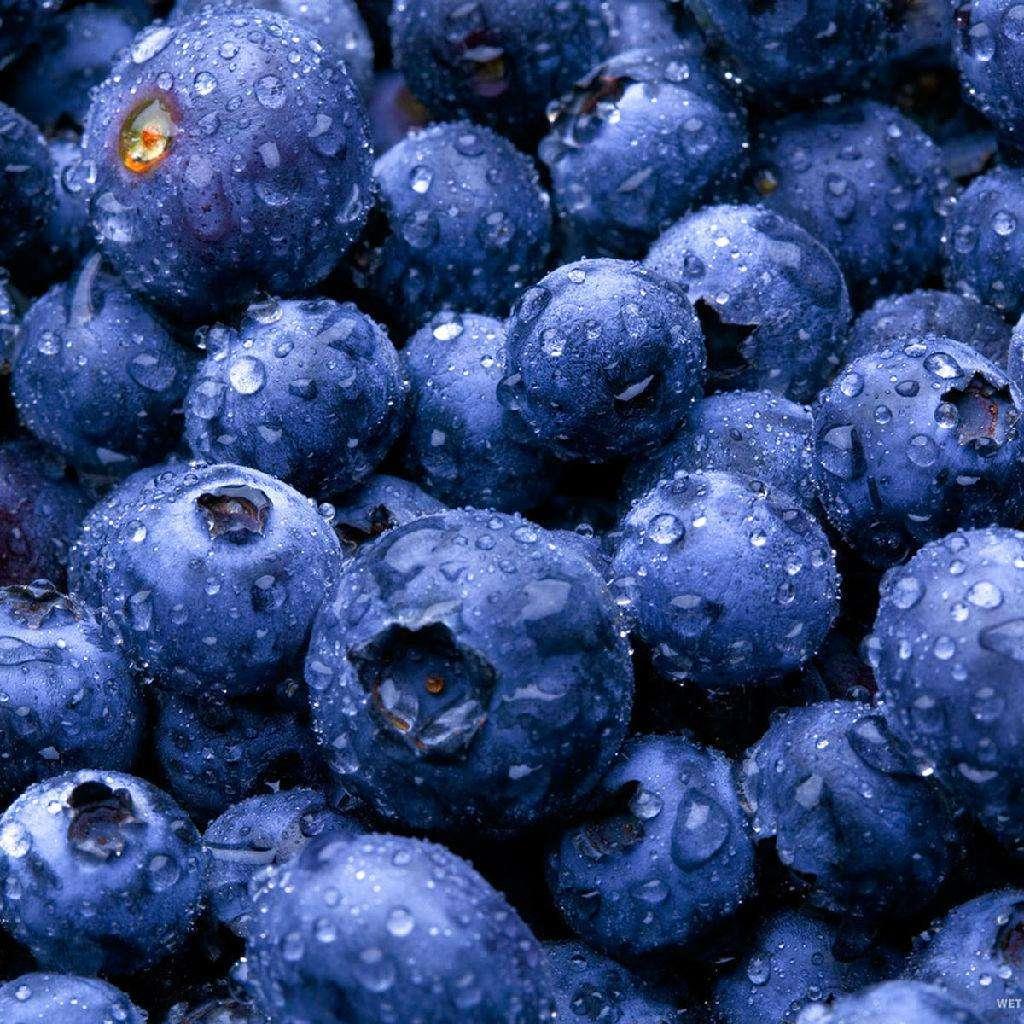 坚持吃蓝莓可降低心脏病几率 降压效果媲美药物