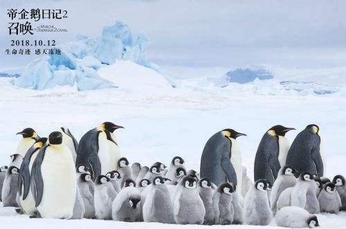 《帝企鹅日记2》